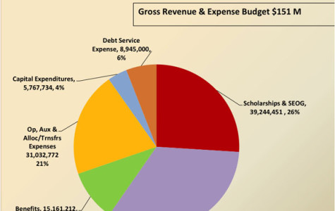A Deeper Look into Dickinson's Budget