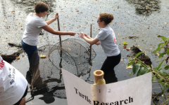 Students Count Turtles for Climate Change
