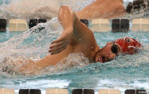 Men's Swimming Tops Franklin & Marshall