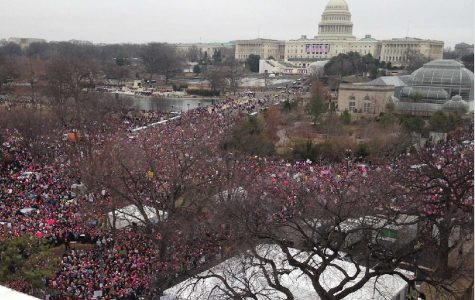 Dickinsonians Join Women's Marches