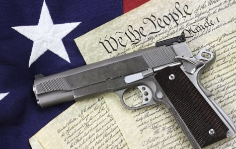 In Defense of the Rights Guaranteed by the Second Amendment
