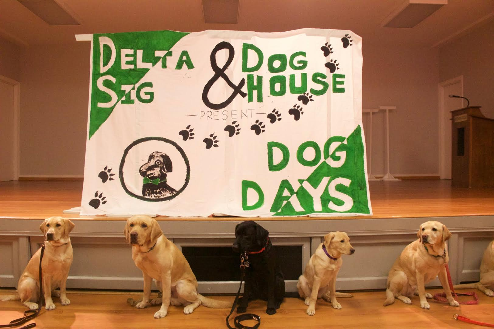 """Dog Days"" hosted by fraternity Delta Sigma Phi took place last Sunday, April 2."