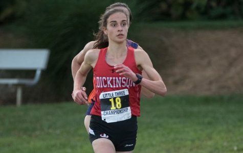 Cross Country Sweeps Little Three