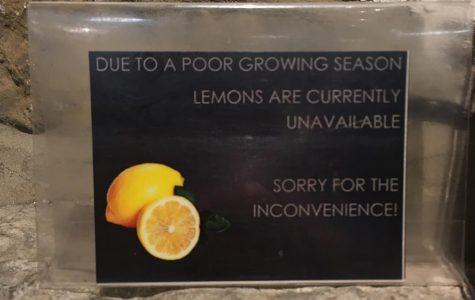 Where Are My Lemons?