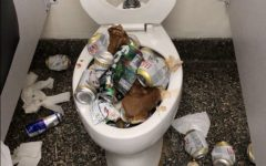 Drayer Toilet Vandalized, Investigation under Review