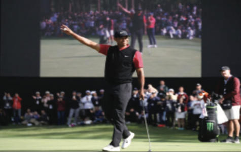 Forever a Champion: Tiger Woods
